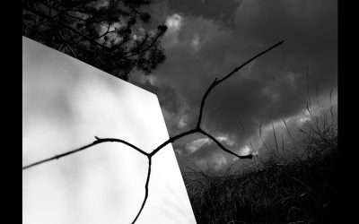 """MANEL ESCLUSA –  """"La sombra del paisaje""""."""