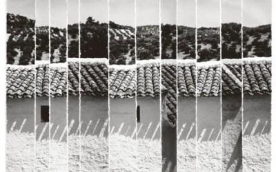 MICHEL DIEUZAIDE – «Lambeauxgraphies»