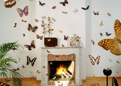 mariposas2005