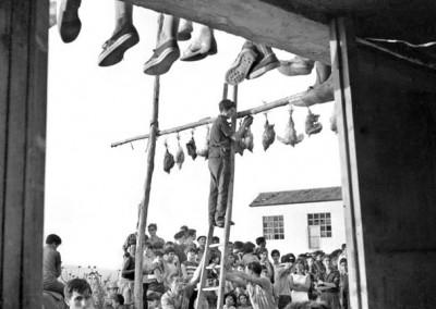 Fiesta de los Gallos en Nalda (La Rioja)